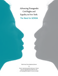 Advancing Transgender Civil Rights and Equality in New York: The Need for GENDA